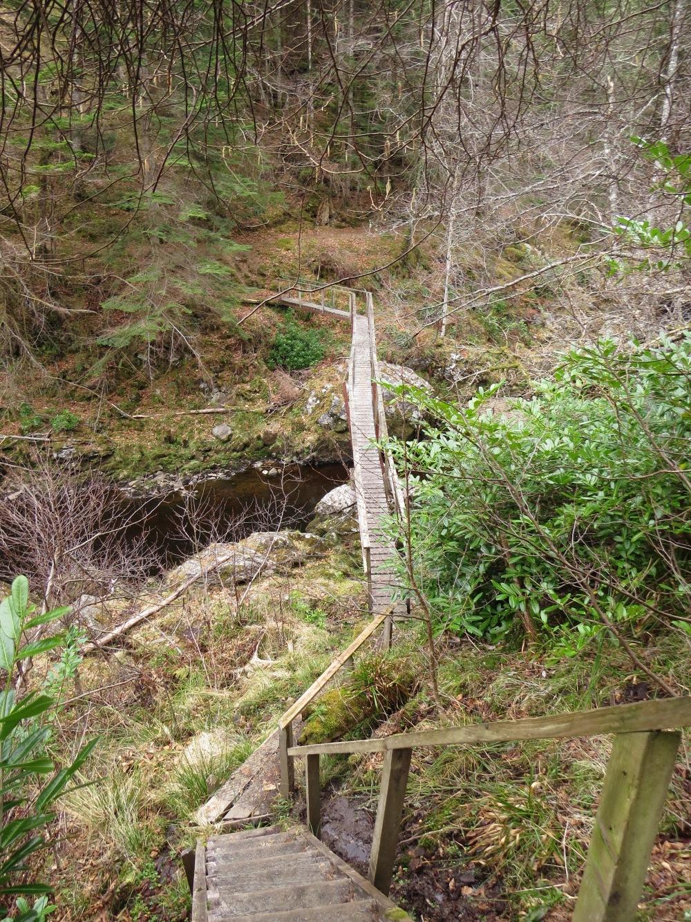 The rickety toothpick bridge!
