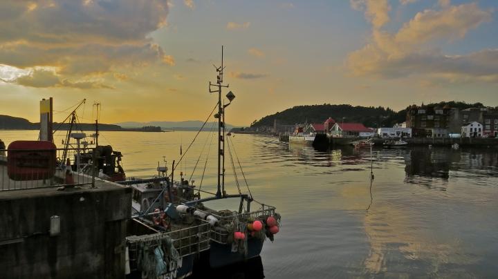 Oban harbour.